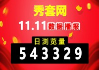 """【贺】秀套网""""双11""""当日浏览量破54万,访客数破2万!"""